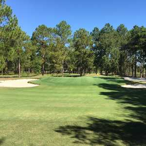 Blueberry Plantation GCC