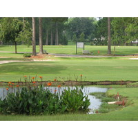 Lakeview Golf Club in Blackshear, Ga., has an interesting mix of holes.