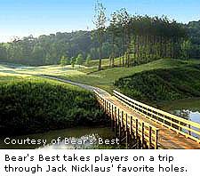Bear's Best